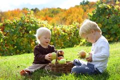 Young Children Playing Outside at Apple Orchard. Two happy young children, a little boy and his baby brother are sitting outside at an apple orchard on a sunny Royalty Free Stock Image