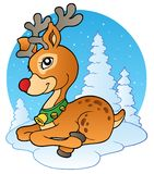 Young Christmas reindeer outdoor 1 Royalty Free Stock Photography