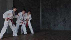 Young clever boy resist alone against three strong rivals in white kimono and became a winner. He shows active combat