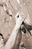 A young climber Stock Photography