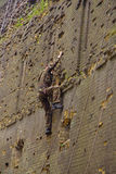 Young climber in khaki Royalty Free Stock Image