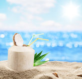 Young Coconut In The Sand At The Beach. Stock Images