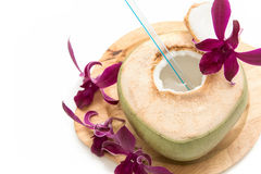Young coconut with orchid isolated Stock Image