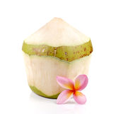 Young coconut,Plumeria on white background. Royalty Free Stock Photography