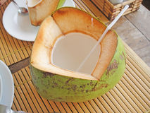 Young coconut Stock Images