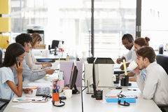 Young colleagues working in a busy open plan office Royalty Free Stock Photo