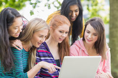 Young college girls using laptop in park Stock Photos