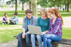 Young college students using laptop in park Royalty Free Stock Image