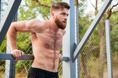 Young concentrated bearded strong man doing sports exercises Stock Image