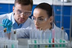 Young concentrated biologists working with the vials focusing on it. royalty free stock photo