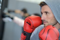 Young concentrated boxer training in gym. Young concentrated boxer training in a gym royalty free stock images