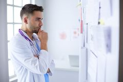 Young and confident male doctor portrait standing in medical office.  Royalty Free Stock Images