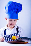 Young cook Royalty Free Stock Photography