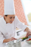Young cook preparing appetizers Stock Photography