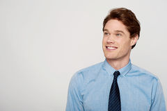 Young corporate guy looking away Royalty Free Stock Photos