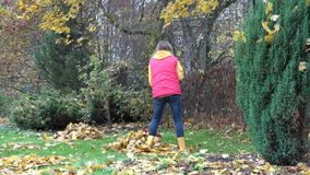 Young country woman girl raking leaves under maple tree in village yard. 4K stock video footage