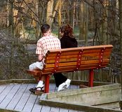 Young Couple. A young couple, enjoys a quiet moment at a park at sunset stock image
