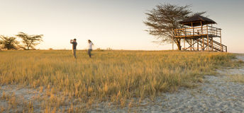 Young Couple on African Safari. A young couple stand in long grass and take photos of sunset while on safari in the Makgadikgadi Pans, Botswana, Africa Royalty Free Stock Photos