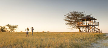 Young Couple on African Safari. A young couple stand in long grass and take photos of sunset while on safari in the Makgadikgadi Pans, Botswana, Africa Royalty Free Stock Photography