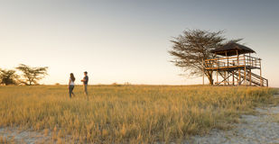 Young Couple on African Safari. A young couple stand in long grass and watch the sunset while on safari in the Makgadikgadi Pans, Botswana, Africa Stock Image