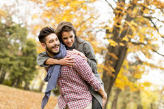 Young couple in the autumn forest Stock Image