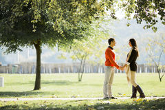Young couple in the autumn park stock images