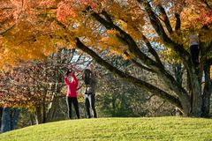 Young couple in autumn park playing with their kids royalty free stock photos