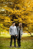 Young couple in the autumn park Stock Image