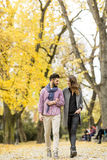 Young couple in the autumn park Royalty Free Stock Images