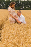 Young couple awaiting baby among the wheat field. A men and a women in tender embrace. Sincere feelings and true love. Photos for magazines, posters and Stock Photos