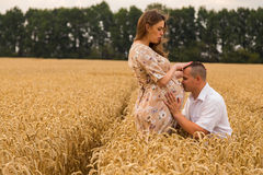 Young couple awaiting baby among the wheat field Stock Image