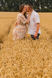 Young couple awaiting baby among the wheat field Stock Photography