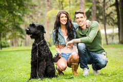 Young Couple With Black Giant Schnauzer Royalty Free Stock Image