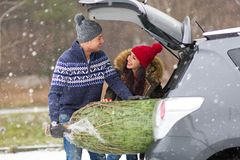 Couple Loading Freshly Cut Down Christmas Tree Into Back Of Their Car Royalty Free Stock Image