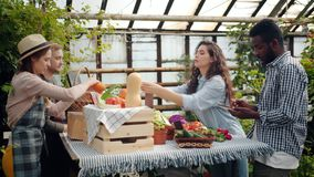 Young couple buying organic food in farm market in greenhouse talking to farmers. Young happy couple African American man and Caucasian woman are buying organic stock footage