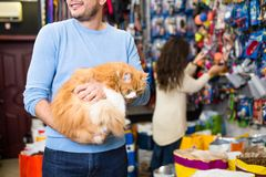 Young couple with cat in petshop royalty free stock image