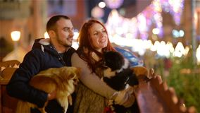 Young Couple with Caucasian Appearance Having Fun with the Couple of Dogs. Lights and Christmass Tree is On Background. People Cuddling with Yourself. HD stock footage