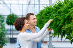 Young couple choosing flowers Royalty Free Stock Photo