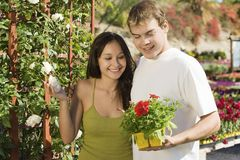 Young couple choosing potted flowers Royalty Free Stock Image