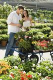 Young couple choosing potted flowers Stock Photography