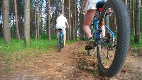 Young couple cycling through the spruce branches in summer forest stock footage