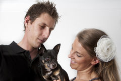 Young couple with dog. Young couple with Chihuahua dog against a white background Stock Photography