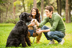 Young Couple With Dog Stock Photo