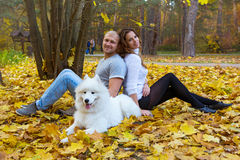Young couple with a dog in the autumn forest Royalty Free Stock Photo