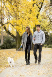 Young couple with dog in autumn park Stock Photos