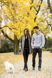 Young couple with dog in autumn park Stock Photography