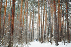 Young Couple with a Dog Having Fun in Winter Stock Photos