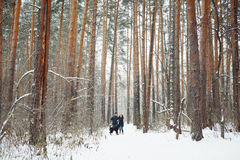 Young Couple with a Dog Having Fun in Winter Stock Photography