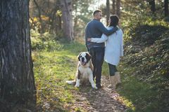 Young couple with dog royalty free stock photos