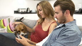 Young Couple With Dog Sit On Sofa Using Digital Tablet stock footage